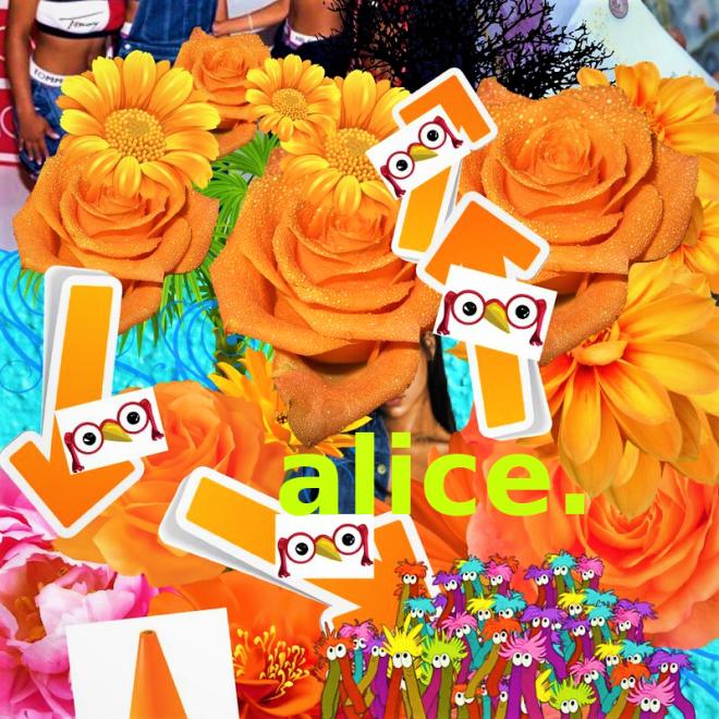 alice. (2)